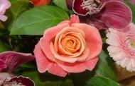 Продвижение интернет магазина по доставке букетов цветов
